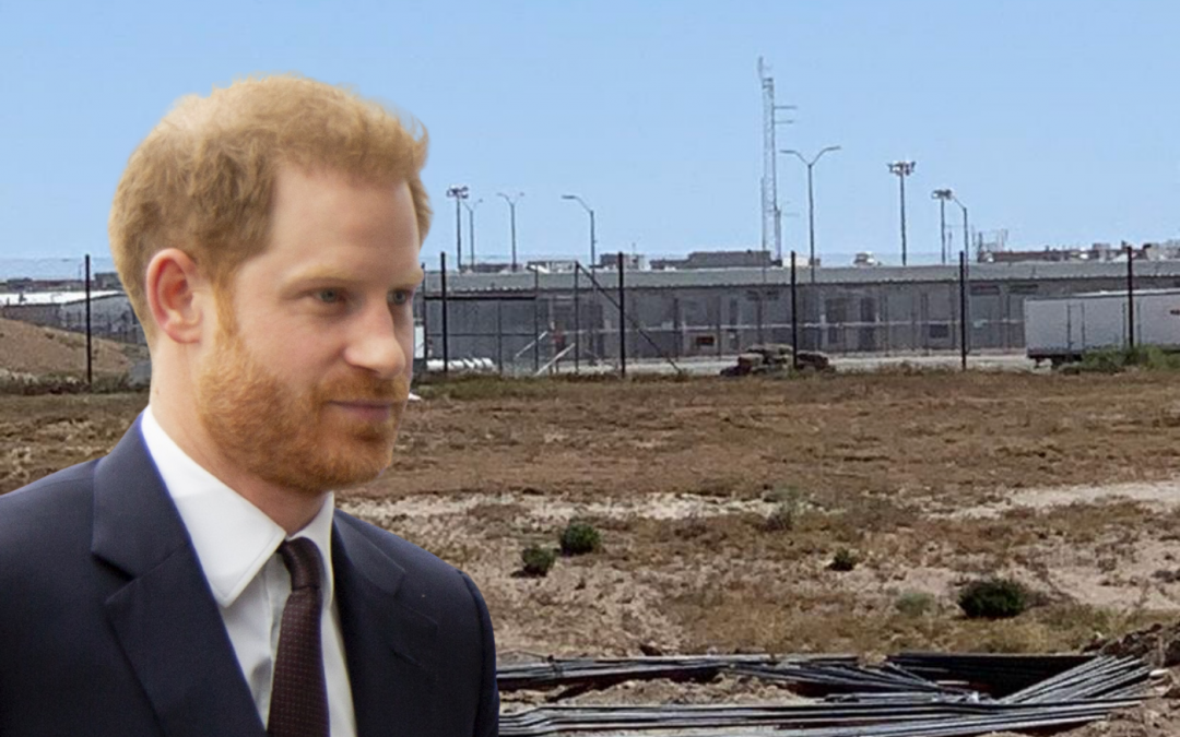 Woman Tries to Sue Prince Harry Saying He Promised to Marry Her; Wants Him in Jail